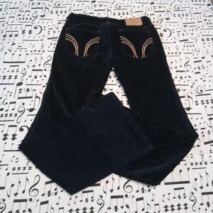 Hollister Velvet Blue Boot Cut Jeans